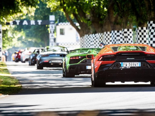 Goodwood Festival of Speed (Credit: Jayson Fong)
