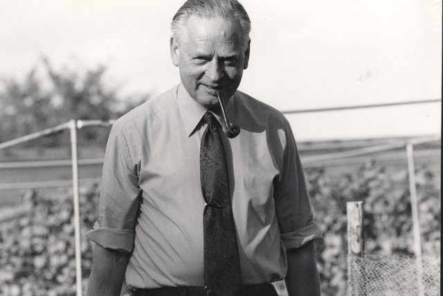 Gardening legend Percy Thrower in his prime