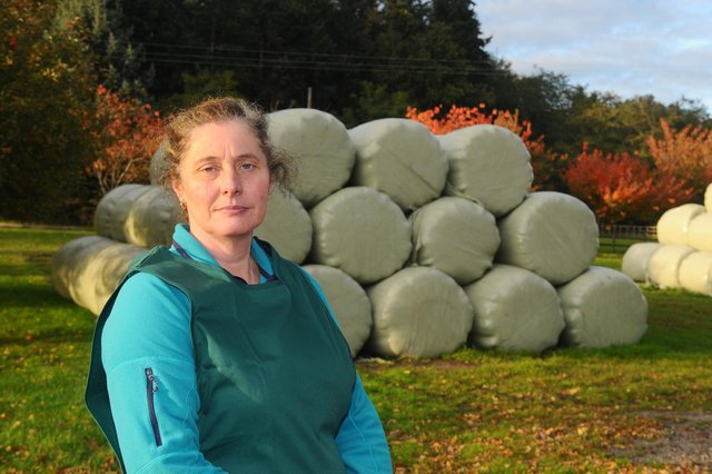 McCarthy's farm in Winchester Road, Wickham, saw 150 haylage bales destroyed in a suspected arson attack on June 17 with firefighters tackling the blast for two hours.   Pictured is: Co-owner of McCarthy's Tracy McCarthy on October 20 after she spoke about the aftermath.  Picture: Sarah Standing (201020-6099)