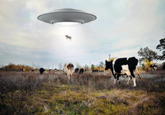 Is this really what alien visitors get up to? Picture by Shutterstock
