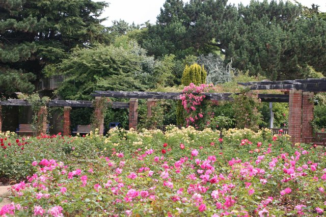 Best parks and gardens to visit in Portsmouth