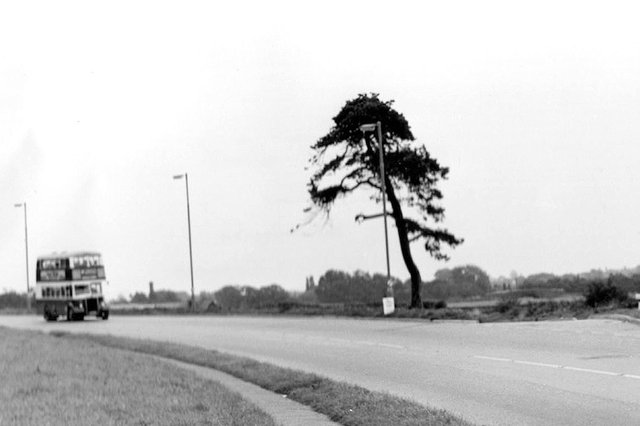 THEN: Fir Tree Corner, circa 1962. The spot where Eastern Road was planned to have its junction with Havant Road.