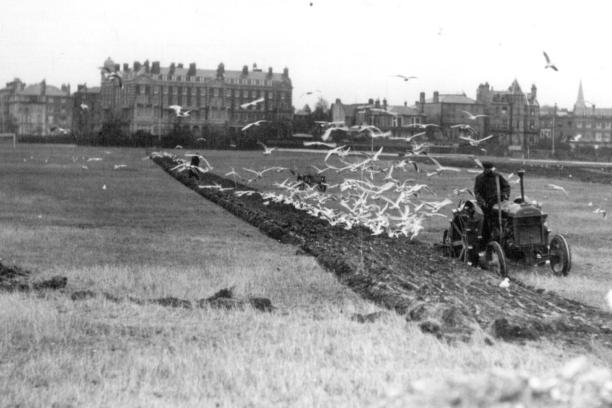 Southsea Common - historic pictures | Nostalgia