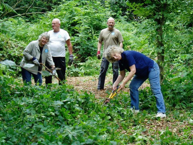 Friends of Park Wood at work