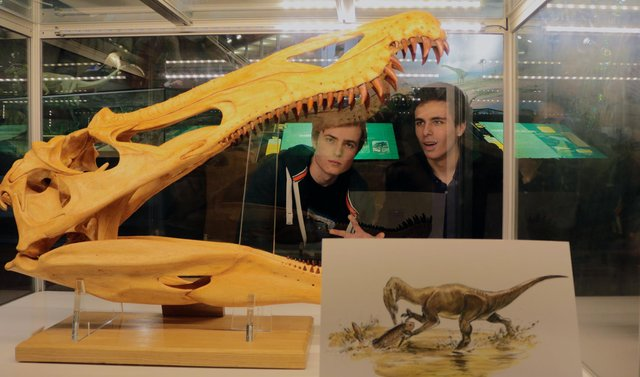 Ben Thomas (left) and his co-presenter Doug James at the Dinosaur Isle Museum in Shanklin.