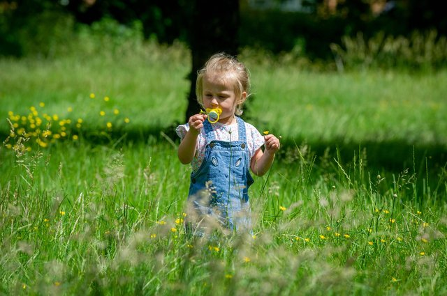 Ruby Allison, three, whose dad George was murdered last year, pictured playing in a field as her family paid tribute to her late father.  Picture: Habibur Rahman