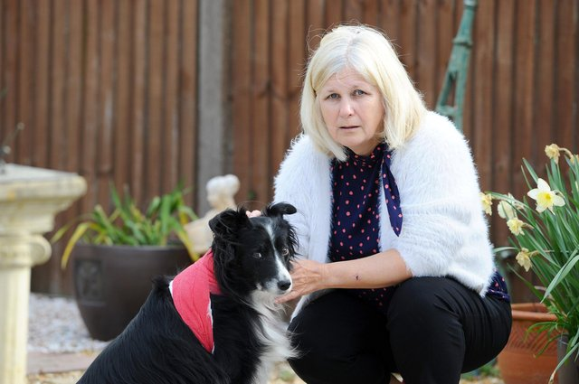 Beverley Chapman and her border collie Hannah, 11, were attacked on Littlepark Avenue when out for a walk by another dog. Picture: Sarah Standing