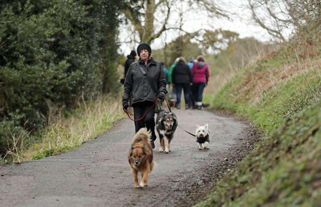 Dog walkers and their pets getting fresh air in the face of the coronavirus pandemic. Picture: David Davies/PA Wire