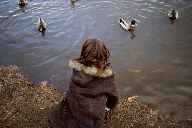 There was drama at the heath pond, Petersfield. Picture: Getty