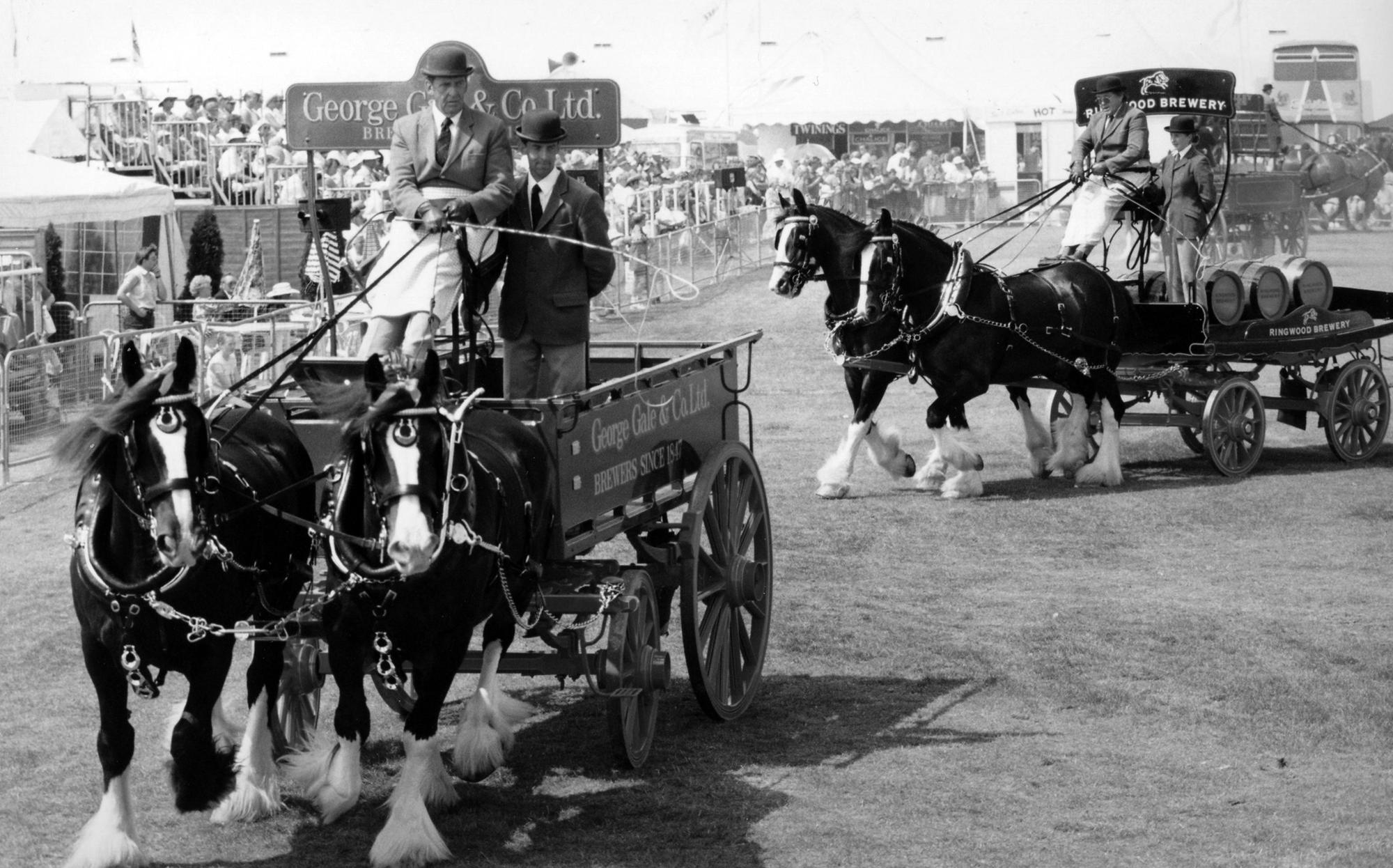 23 fun memories of the popular Southsea Show